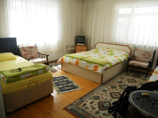 Sehsuvar Peace Pension : Spacious and colourful room