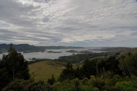 Larnach Castle Lodge : Amazing view from the balcony of Kate's Room