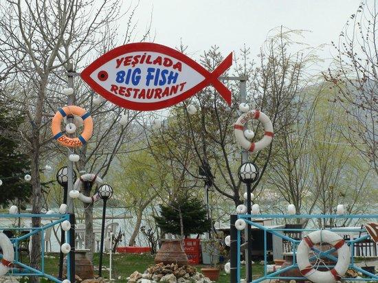 the big fish egirdir restaurant reviews phone number