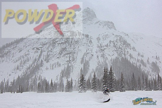 Toby Creek Adventures Ltd.: Powder X