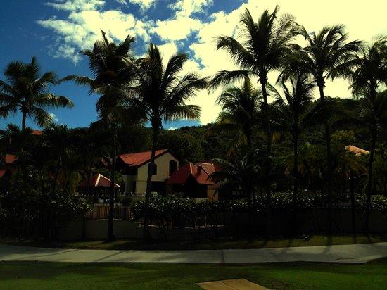 Renaissance St. Croix Carambola Beach Resort & Spa: resort ground