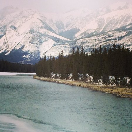 Fairmont Jasper Park Lodge : Drive to the lodge