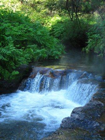 Kerosene Creek : Hot river