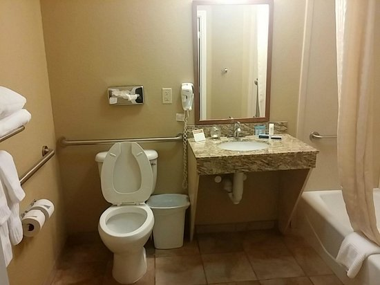 Candlewood Suites Austin N-Cedar Park: Bathroom (accessible room)