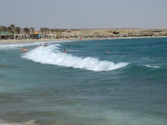 El Malikia Resort Abu Dabbab: Waves