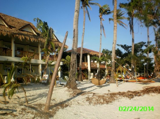 Ocean Vida Beach & Dive Resort: Hotel