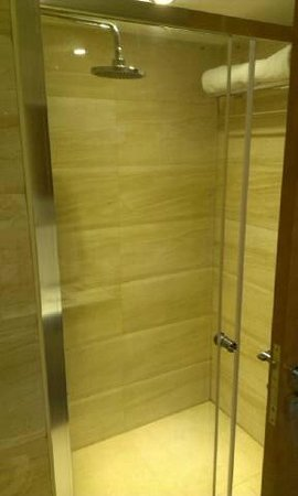 Best Western Ashoka: shower