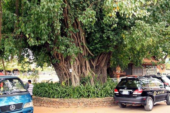 Khemara Angkor Hotel & Spa: Улочки Сием-Рипа