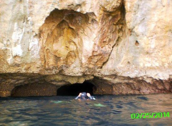 Sea Explorers Malapascua: Diving under Gato Island
