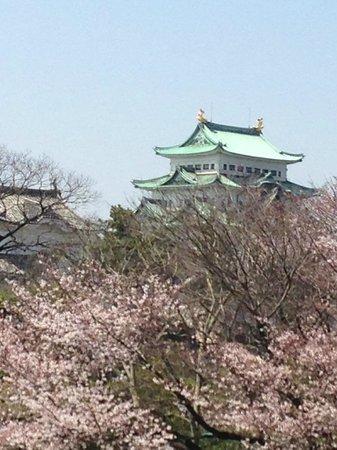 Nagoya Castle : 城と桜