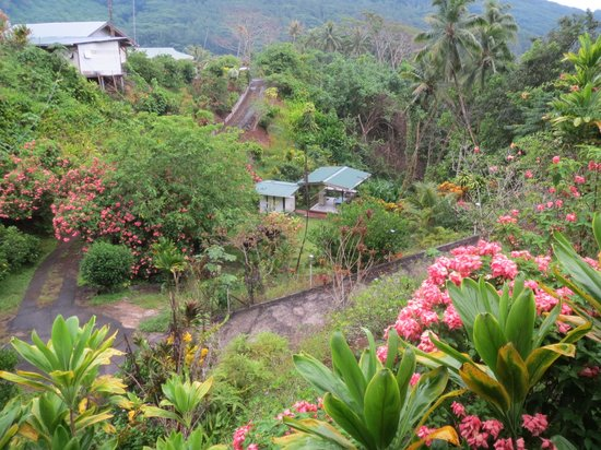 Pension Te Maeva : ペンションテラスから食堂キャンプ場を望む