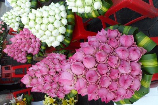 Khuon Tour Private Day Tours: Fleurs de lotus