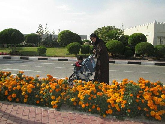 Katara Cultural Village: Blossoms of Katara