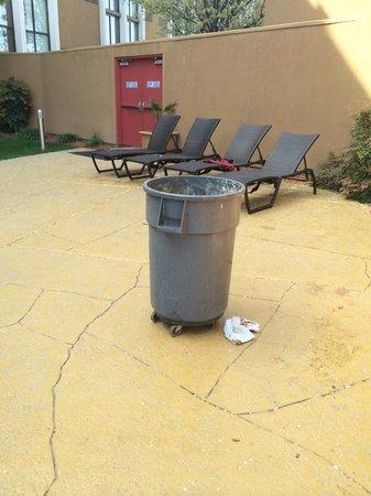 Crowne Plaza Sacramento: poubelle sale en plein milieu de l'espace piscine