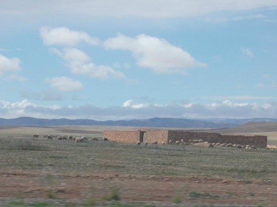 Taxi Amarrakech: sur la route entre Marrackech et essaouira