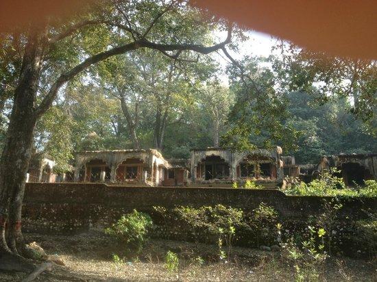 Dev Ganga Guest House: de verlaten en door het oerwoud overwoekerde Beatles ashram