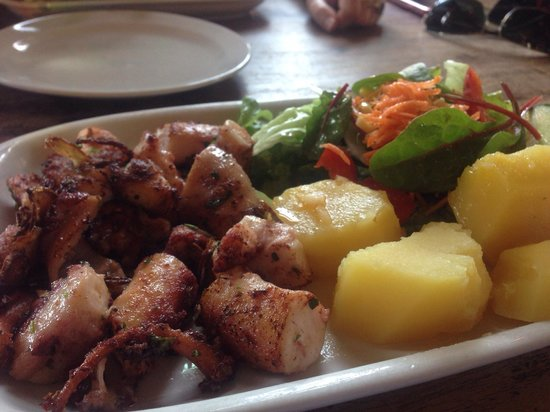 Clube Portugues: Octopus