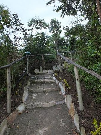 Gorilla Valley Lodge: Uneven walkways.