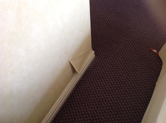 Radisson Blu Scandinavia Hotel: Die Tapete
