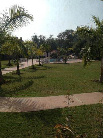 Hotel Usha Bundela: Pool and grounds