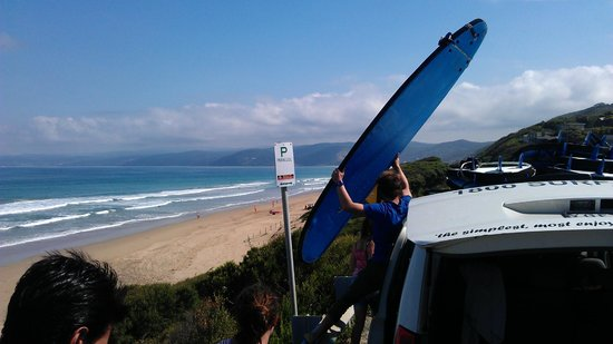 Great Ocean Road Surf Tours: One of the coaches loading the van