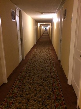 Country Inn & Suites: lots of long hallways, but well lit