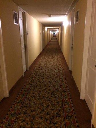 La Quinta Inn & Suites Aberdeen-APG: lots of long hallways, but well lit