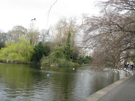 Parque St Stephen's Green: Peaceful Place