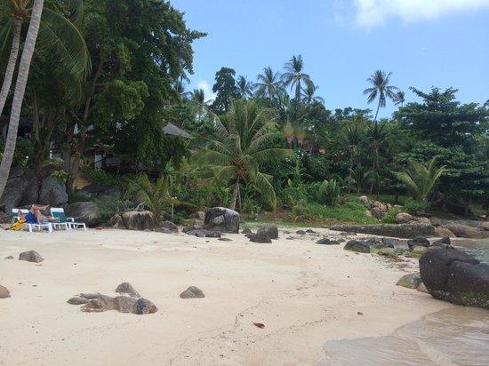 Lamai Bay View Resort : beach