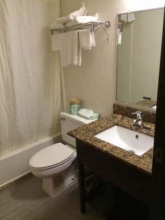 Super 8 by Wyndham Aberdeen MD: best part of the room - recently remodeled bathroom