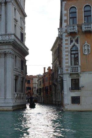 Canal Grande: 運河からの眺め
