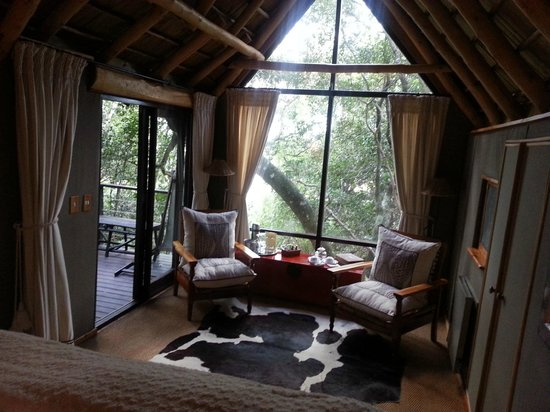The Phantom Forest Eco-Reserve: our room