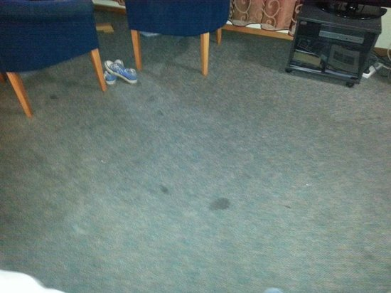 Central Park Motor Lodge: Stained dirty carpet in room