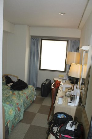 Shinjuku New City Hotel: Small room
