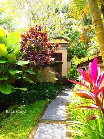 The Ubud Village Resort & Spa: お部屋(ヴィラ)の庭