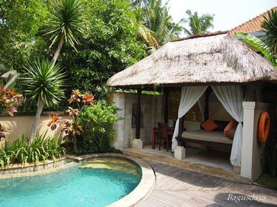 The Ubud Village Resort & Spa: お部屋(ヴィラ)のプール。結構深いです!