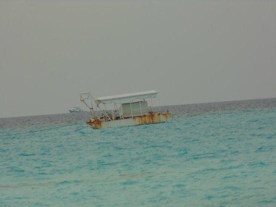 Velassaru Maldives : Boat