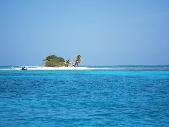 Bay Islands Adventures : Paradise!