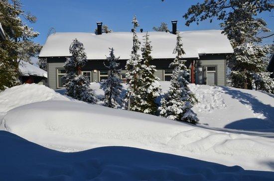 Ski-Inn MastonAitio Cabins: Вид с терасы MastonAitio