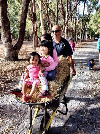 Margaret River Hideaway & Farmstay : My 17month old gal enjoying the ride!