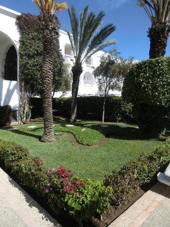 Royal Decameron Tafoukt Beach Hotel : Une vue des jardins