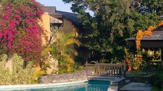 Temple Tree Resort & Spa: jardin