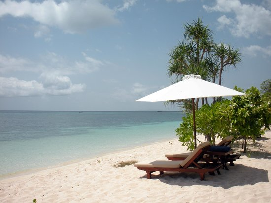 Wakatobi Dive Resort: Beach view
