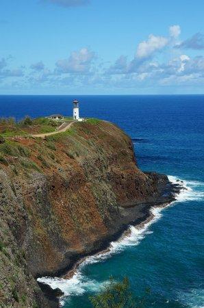 Kauai Photo Tours - must do!