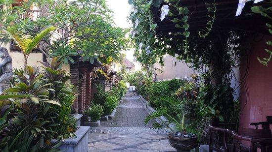 Bali Ayu Hotel : Long pathway