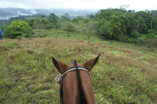 Cabalgata Don Tobias: The view from Mariposa - great horse!