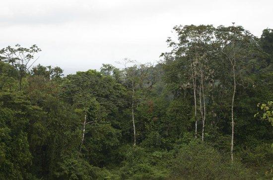 Cabalgata Don Tobias: One of the gorgeous areas we saw