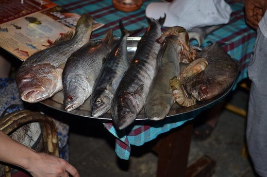 The Mahal: Fresh fish to choose from daily- red snapper, shark, sea bass, barracuda, tiger prawn