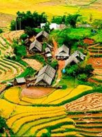 Vietnam Open Day Tours