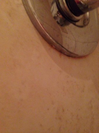 Mercure Chester Abbots Well Hotel: Scum under the shower taps